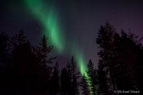 Northern Lights Rovaniemi