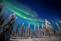 Nellim Wilderness Lodge - Northern Lights