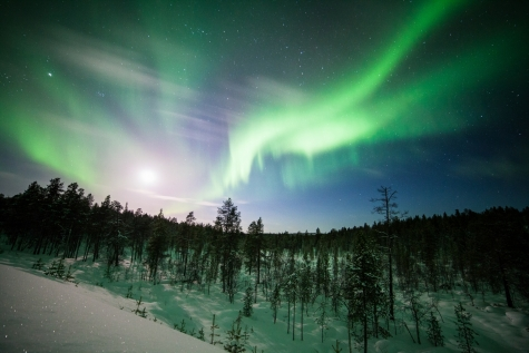 A Dazzling Display of Aurora