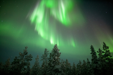 Aurora by Harriniva Wilderness Lodge