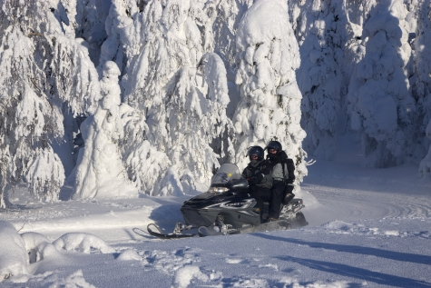 Snowmobiling in Iso Syote