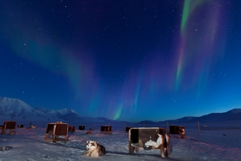 Catch A Glimpse Of The Aurora Borealis