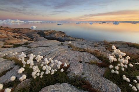 Beach Cliffs In Ilulissat
