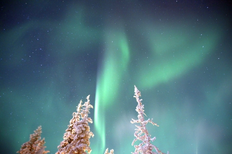 Witness The Northern Lights From Jarvi Lodge
