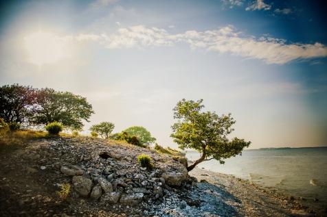 A Beautiful Island North Of Gotland