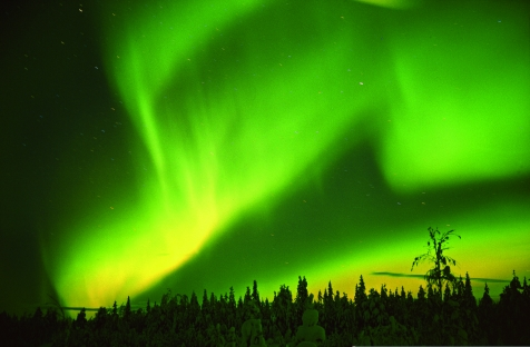 Arctic Sky Bursting With Northern Lights