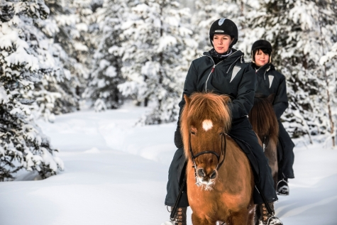 Ride Into The Arctic By Horseback