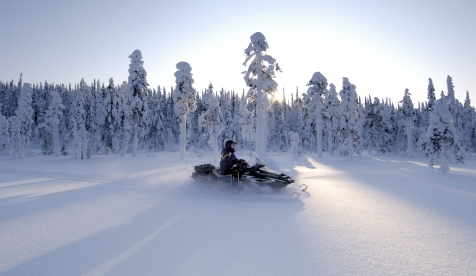 Wilderness Snowmobile Experience
