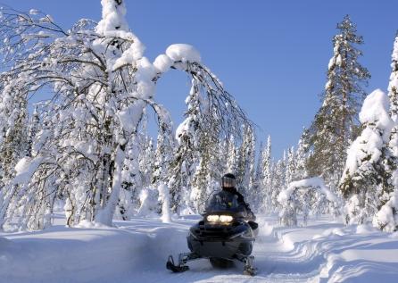 Snowmobile Safari Into The Wilderness