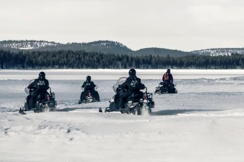 A Snowmobile Arctic Wildlife Safari