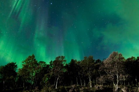 Bursts Of Aurora