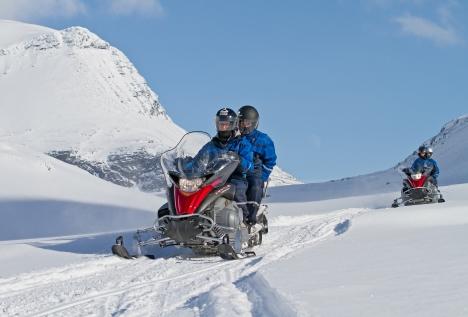 An Arctic Experience