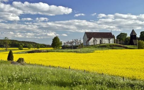 Colourful Field's Of Sweden