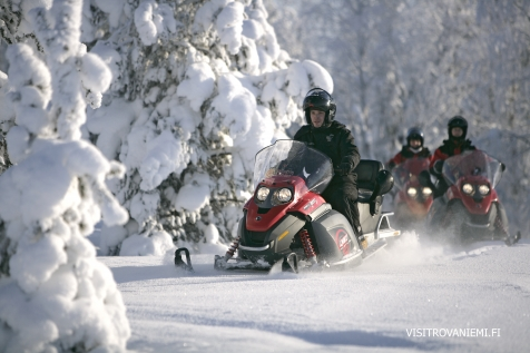 Drive A Snowmobile Through The Snowy Forests