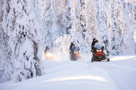 Snowmobile Through The Lapland Fells