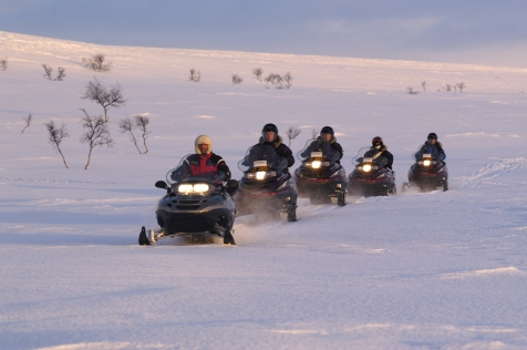 Join A Guided Snowmobile Safari In Alta