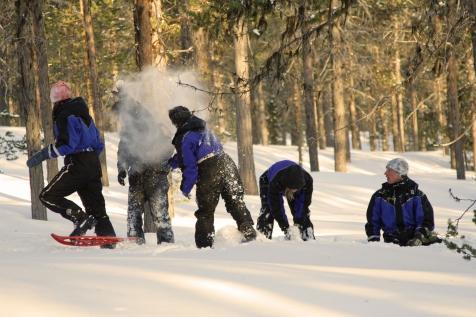 Snowshoeing in Harriniva