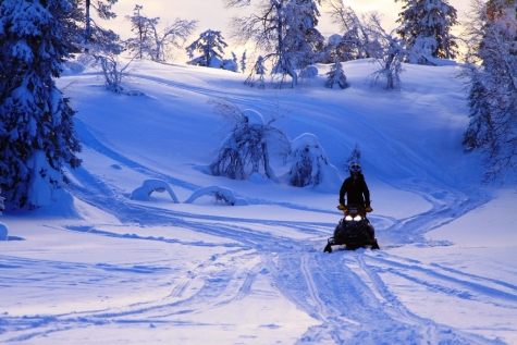 Explore The Snowy Landscape By Snowmobile