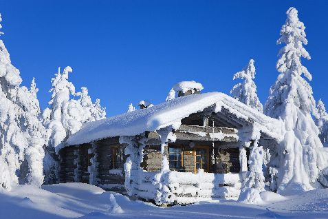 Winter Log Cabin Nordic Experience
