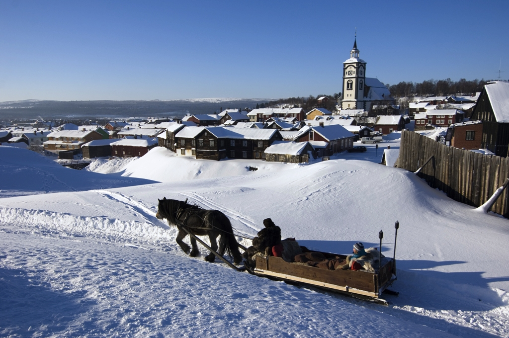 Horse Amp Sleigh Rides In Roros Nordic Experience