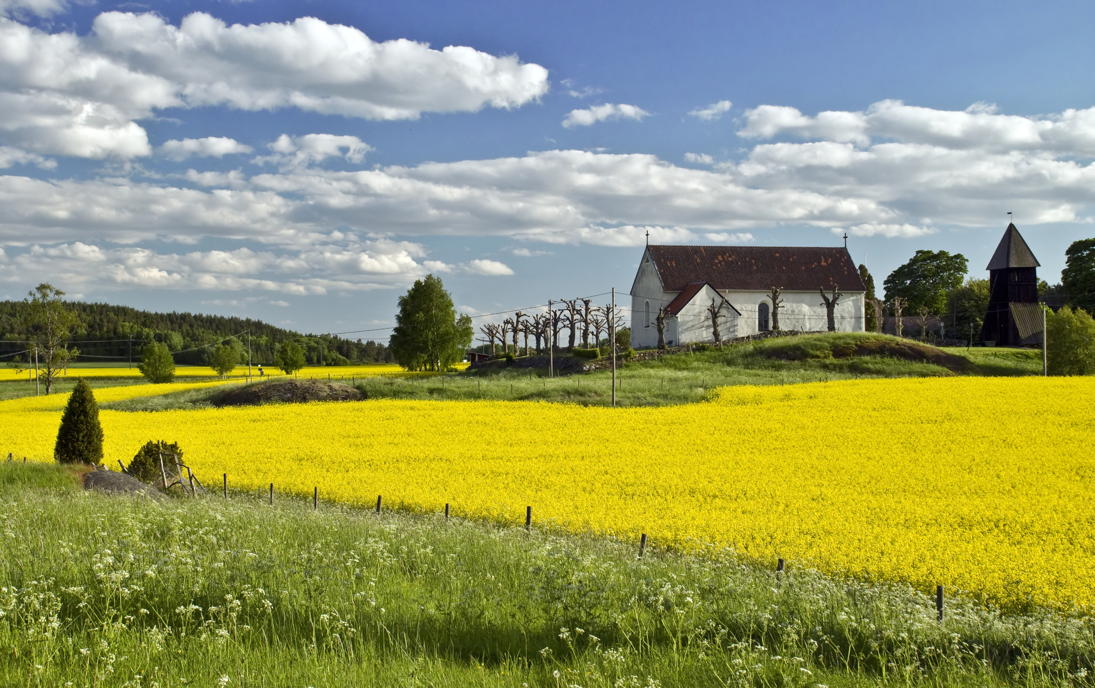 Sweden's Countryside