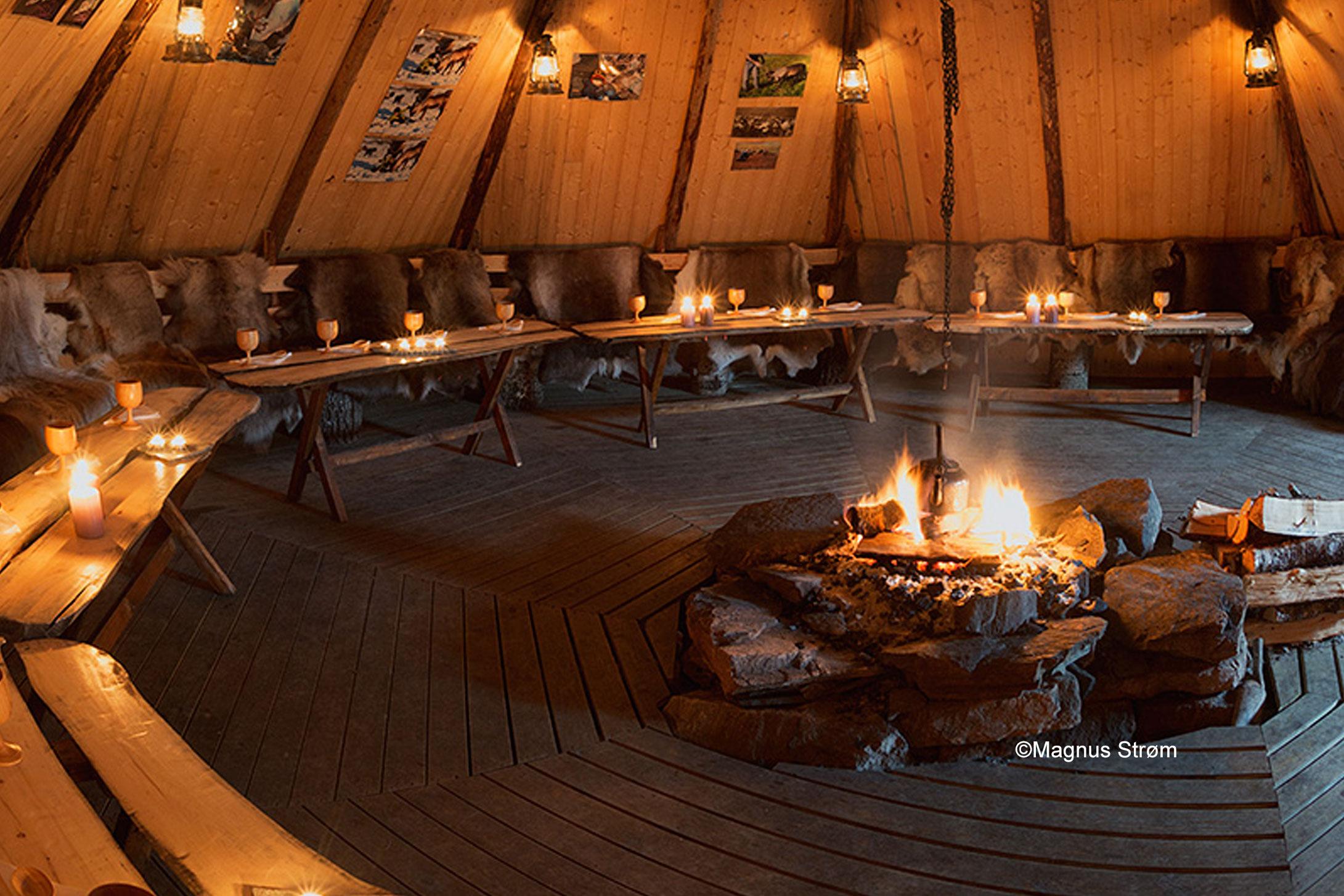 Sami Culture & A Reindeer Encounter